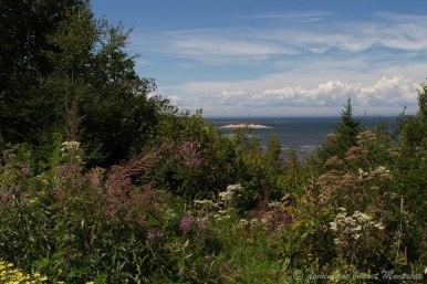 Le fleuve, depuis les Jardins de Métis