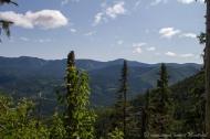 Vu pendant la montée vers le Mont Albert. 12km aller-retour