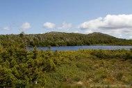 lac sur le plateau du Mont Albert
