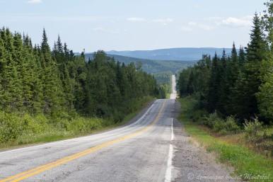 La route dans le parc de la Gaspésie