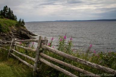 Vue sur le golfe de Gaspé