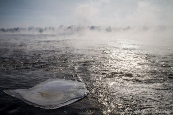 Brume hivernale sur la rivière