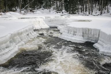 Elle fait son chemin entre des murs de glace