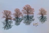 apres-une-inondation-slovenie