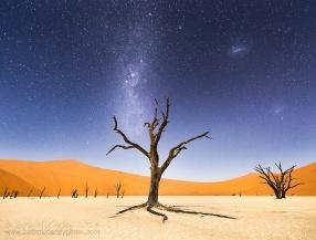 desert-de-namibie-afrique