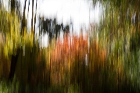 20/10/2017, iso 100, 50mm, f/32. 1/13e seconde